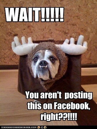 WAIT!!!!! You aren't posting this on Facebook, right??!!!!
