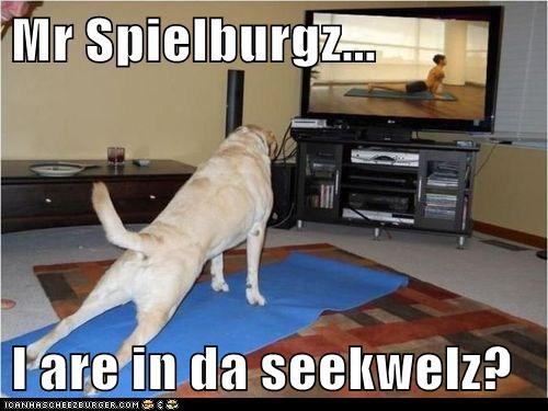 Cheezburger Image 6587924736