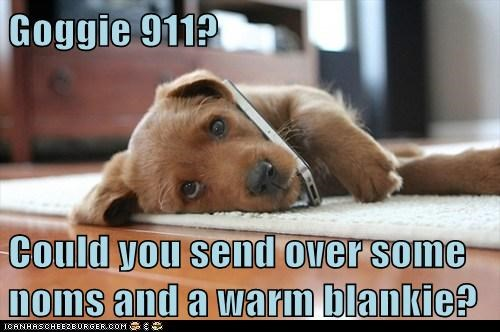 dogs puppy 911 call noms blanket emergency - 6587970304