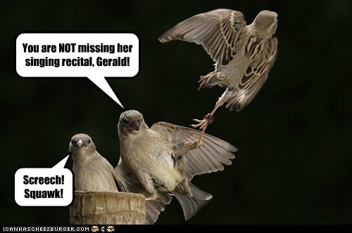 You are NOT missing her singing recital, Gerald! Screech!Squawk!