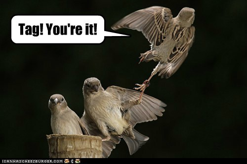 tag bird games youre-it flying grabbing - 6588586752