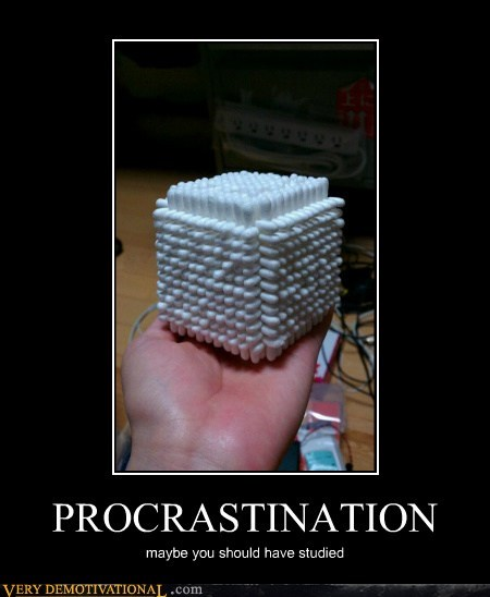 PROCRASTINATION maybe you should have studied