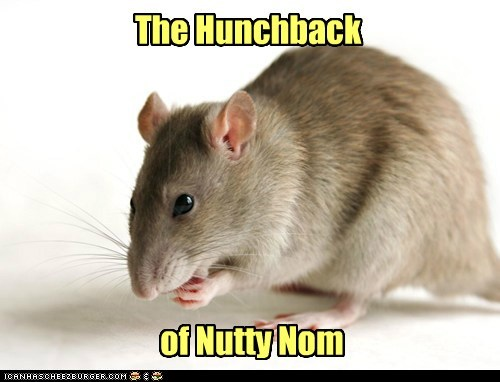 rat nom The Hunchback of Notre-Dame Random House books - 6589448704