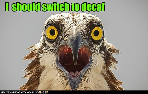 I should switch to decaf