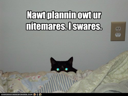 plan creepy captions evil Cats nightmares