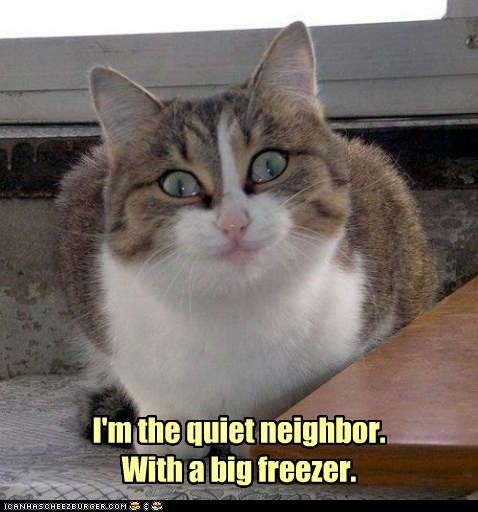 captions Cats crazy creepy freezer fridge neighbor - 6591169024