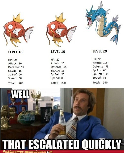 gyarados,level 20,magikarp,meme