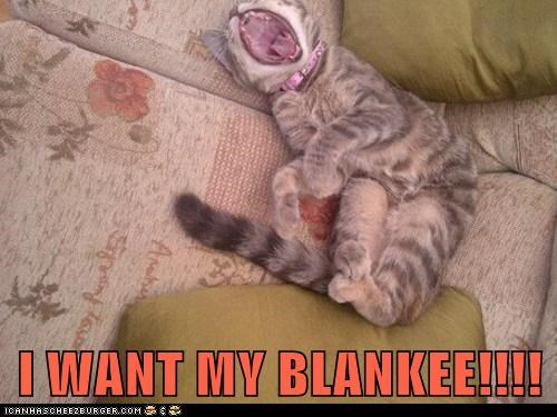 blanket captions Cats child cry kid tantrum yell