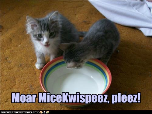breakfast captions Cats cereal mice pun rice crispies - 6591494912