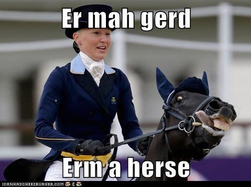 Ermahgerd,horse