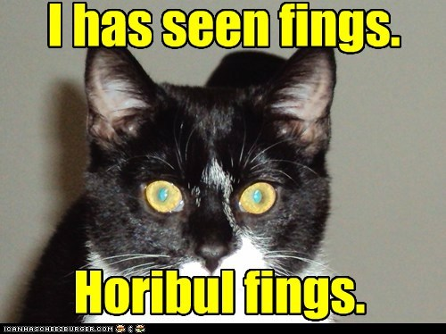 horror scary horrible see captions eyes Cats - 6591864832