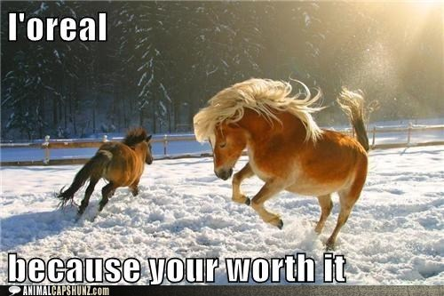 horse loreal because-youre-worth-it hair shampoo commercial categoryvoting-page lolcats - 6591873024