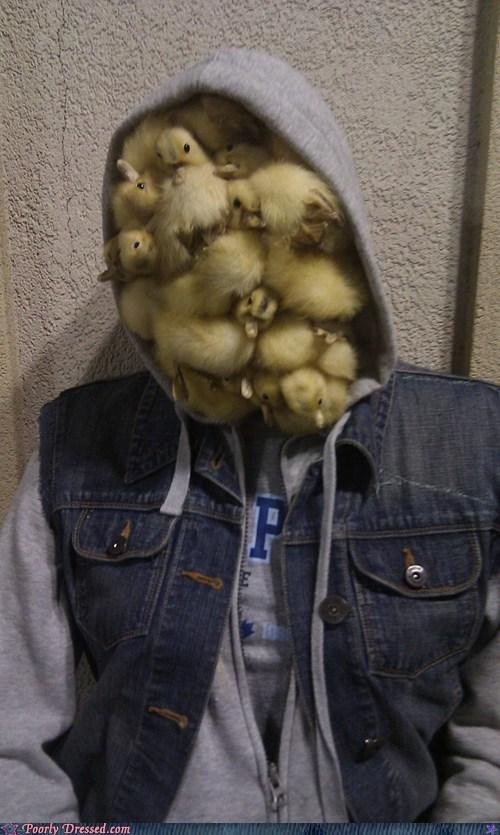 duck face,ducks,hoodie