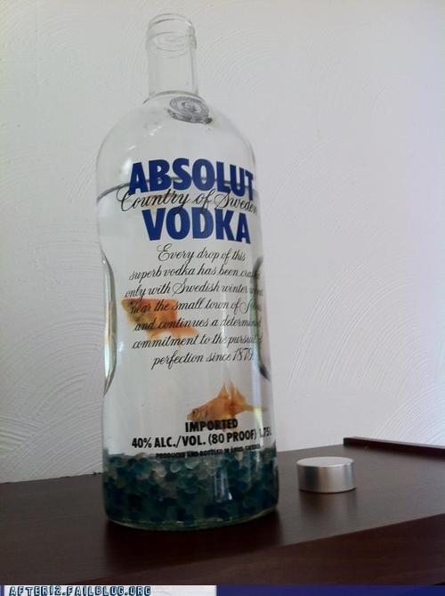 crunk critters drunk fish goldfish vodka - 6591917824
