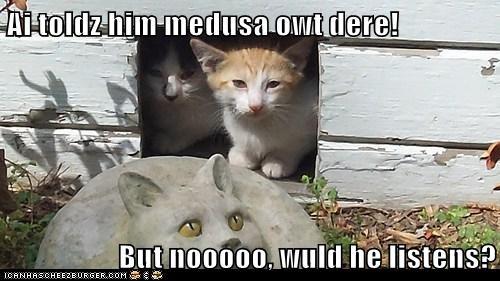 Ai toldz him medusa owt dere!  But nooooo, wuld he listens?