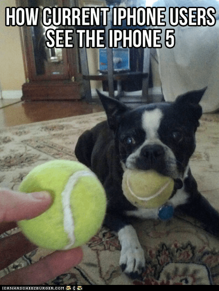 apple,captions,dogs,iphone,iphone 5,new,technology,tennis balls,upgrades,want