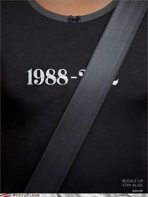 buckle up driving quebec quebecois seatbelt wear your seatbelt - 6592205824