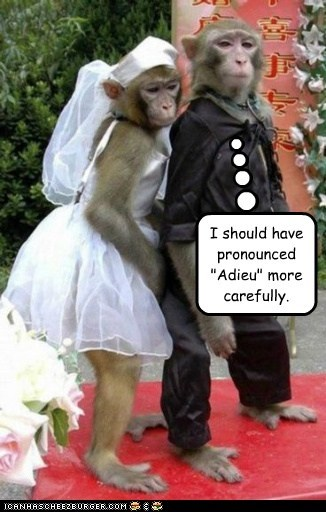 monkeys wedding marriage adieu I Do stuck mistake pronounced