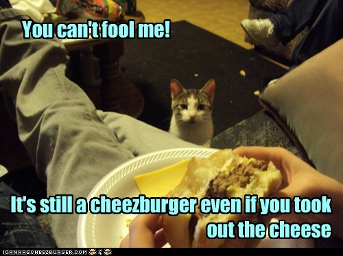 You can't fool me! It's still a cheezburger even if you took out the cheese