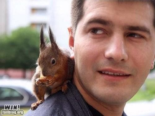 cute friend pet squirrel - 6592595456