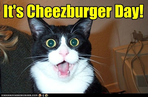 Cheezburger Image 6593594624