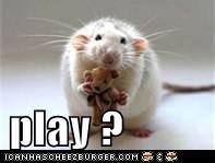 play ?
