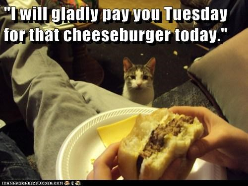 Cheezburger Image 6593778944