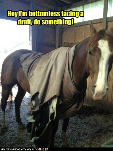 horse,bottomless,draft,cold,clothes