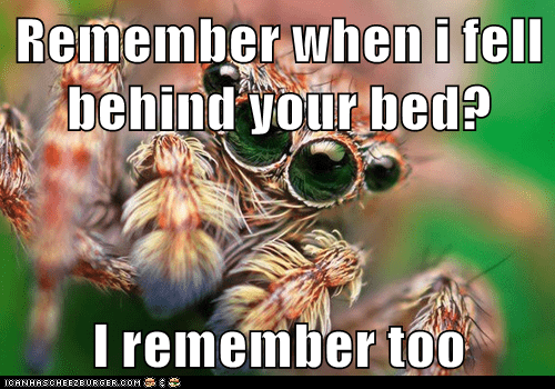 spider fell bed creepy remember seeing