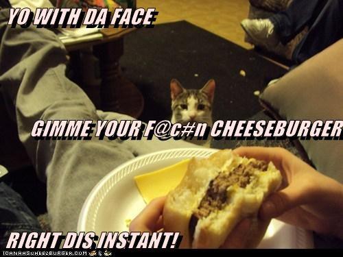 Cheezburger Image 6594070016