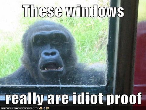 gorilla,derp,windows,idiot proof,idiot,expression,test,lolz