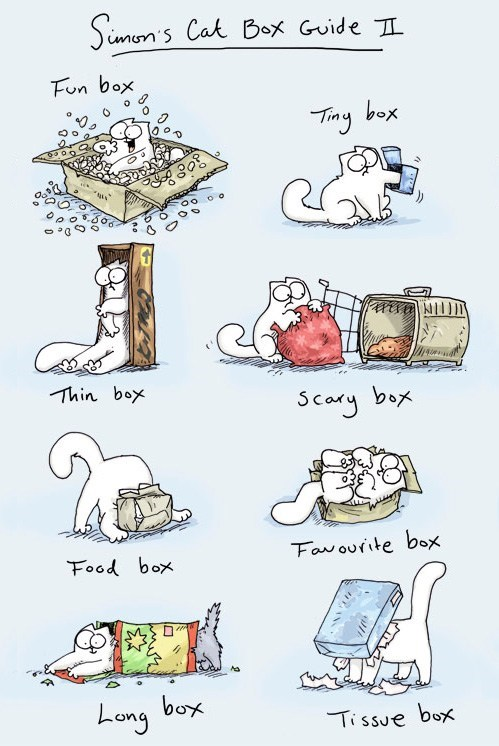 boxes cardboard boxes Cats guides illustrations infographics simons-cat - 6594210048