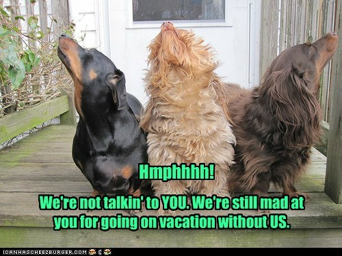 We're not talkin' to YOU. We're still mad at you for going on vacation without US. Hmphhhh!