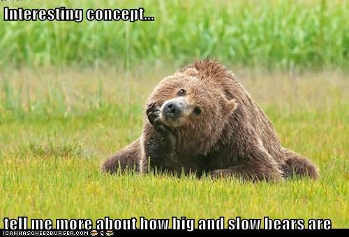 Interesting concept... tell me more about how big and slow bears are
