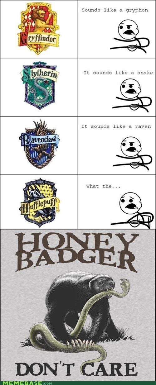 gryffindor,Harry Potter,honey badger,hufflepuff