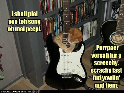 captions,Cats,electric guitar,guitar,Music,noise,Screech,song of my people