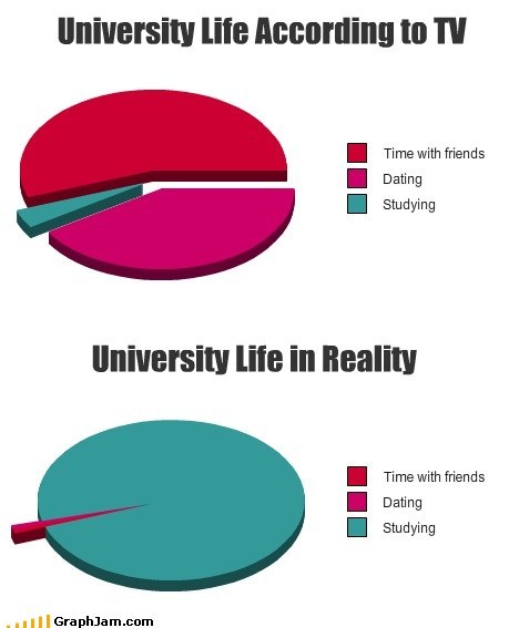 college,dating,Pie Chart,studying,TV,university