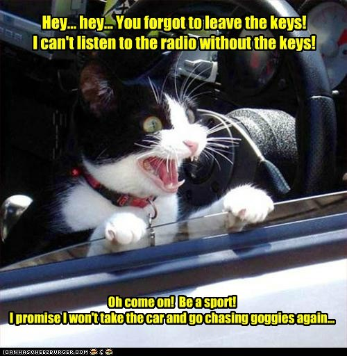 Hey... hey... You forgot to leave the keys! I can't listen to the radio without the keys! Oh come on! Be a sport! I promise I won't take the car and go chasing goggies again...