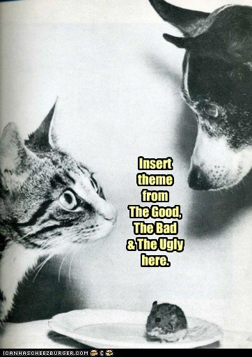 captions Cats dogs mouse Movie reference the good the bad and the ugly Theme Song - 6596200192