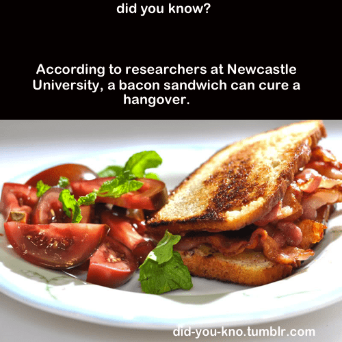 bacon sandwich,cured,did you kno,hangovers