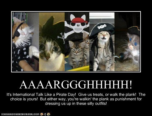 Cats,costume,holidays,international talk like a pirate day,pirates,polls,talk like a pirate day
