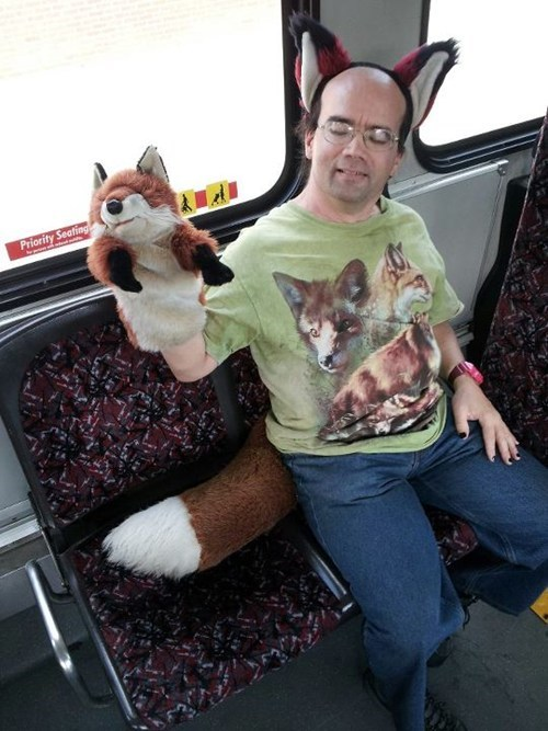 bus,fox,puppet