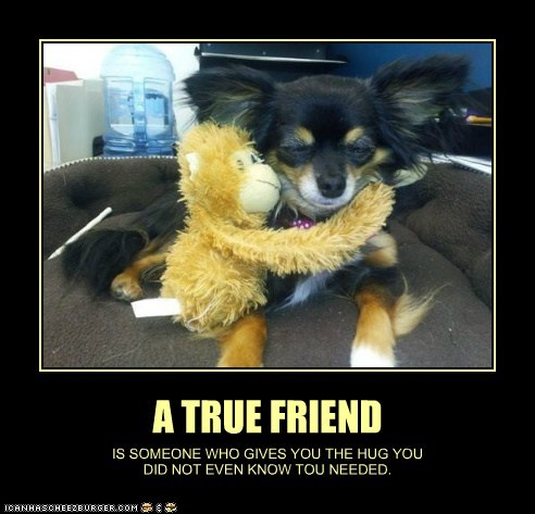 A TRUE FRIEND IS SOMEONE WHO GIVES YOU THE HUG YOU DID NOT EVEN KNOW TOU NEEDED.