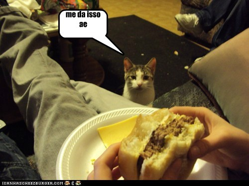 Cheezburger Image 6596889600
