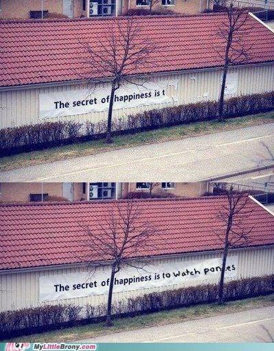 IRL secret of happiness watch ponies - 6597265152