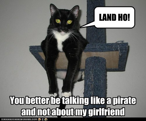 LAND HO! You better be talking like a pirate and not about my girlfriend