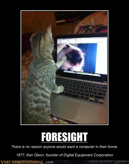 Cats,foresight,no one predicts,on the internet