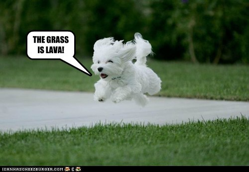 THE GRASS IS LAVA!