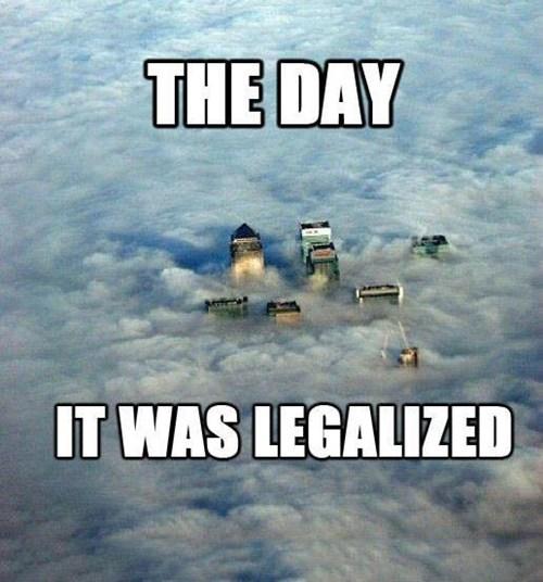 contact high drugs legalization marijuana - 6598685184