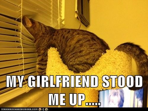blinds,captions,Cats,ditched,forever alone,girlfriend,love,romance,sigh,stood up,waiting